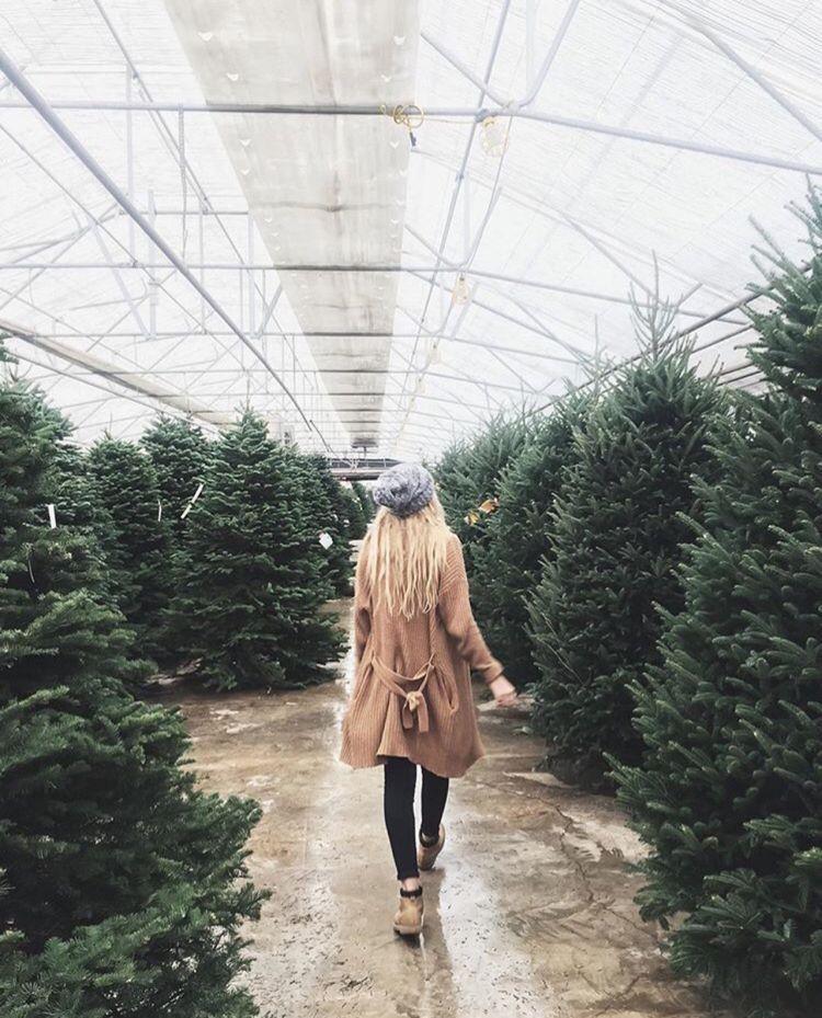 Riityeyayeѕt Caitlin Christmas Aesthetic Winter Christmas Winter
