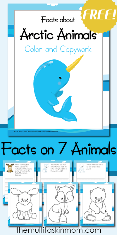 and Copywork: Facts about Arctic Animals Color and Copy Work Facts about Arctic Animals includes 7 fun arctic animals to learn aboutColor and Copy Work Facts about Arctic Animals includes 7 fun arctic animals to learn about