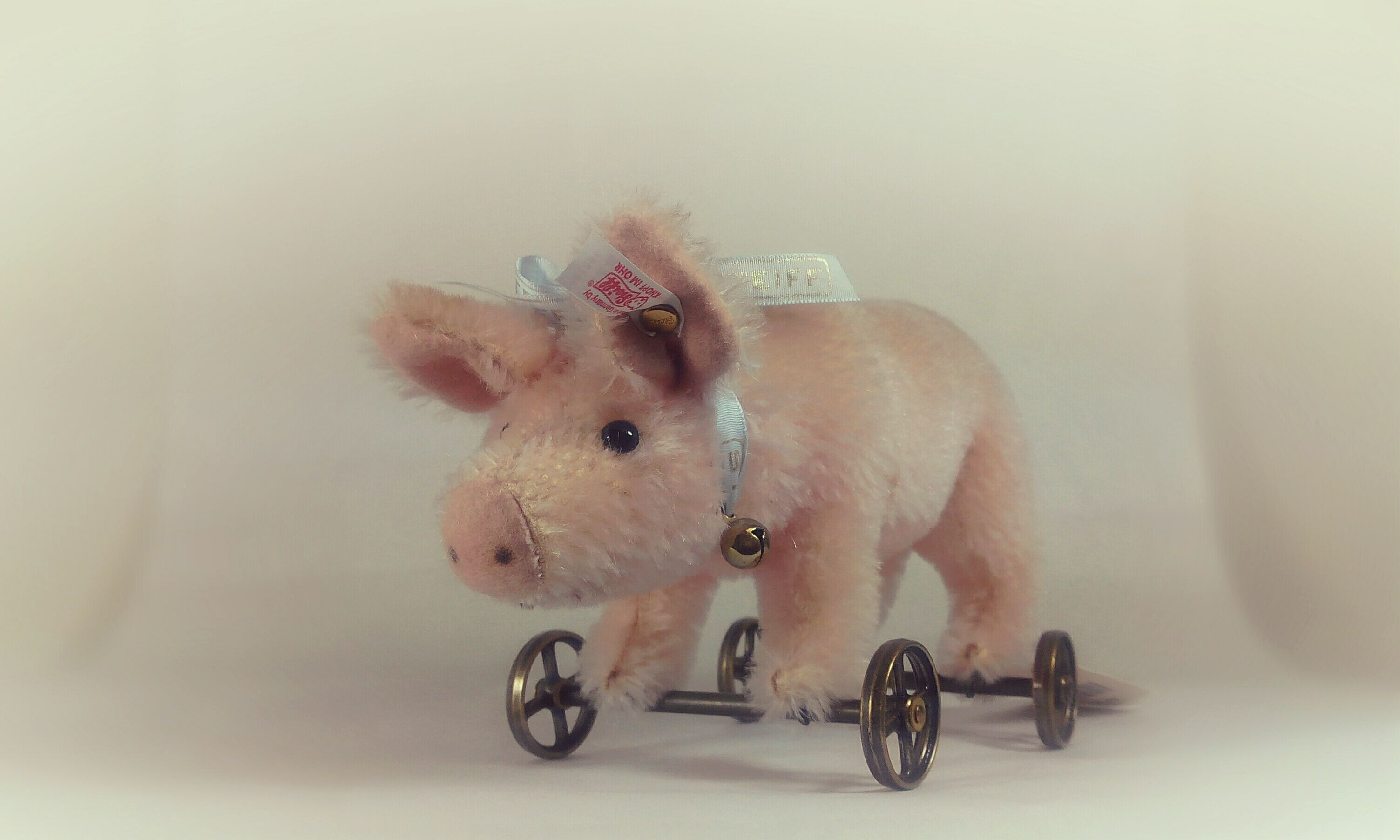 In The Germanic Tradition Pigs Are Regarded As A Symbol Of Luck
