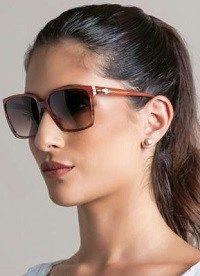 Oculos De Sol Feminino Ana Hickmann Eyewear Ah9107 T02 Marrom