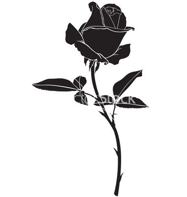 Roses silhouette vector | Tattoo ideas | Pinterest ...