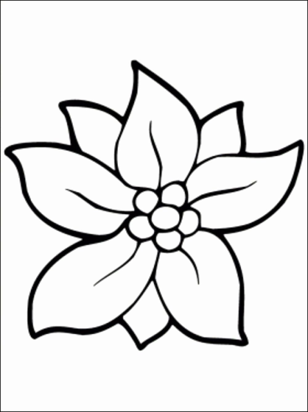 Bursting Blossoms Flower Coloring Page Printable Flower Coloring Pages Flower Coloring Pages Flower Coloring Sheets
