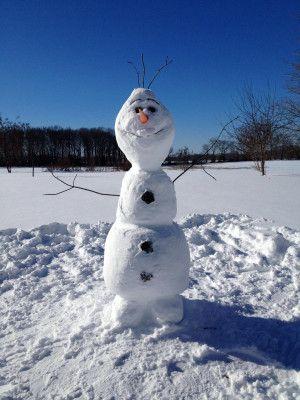 Arbres bonhomme de neige froid hiver neiges olaf - Bonhomme de neige olaf ...