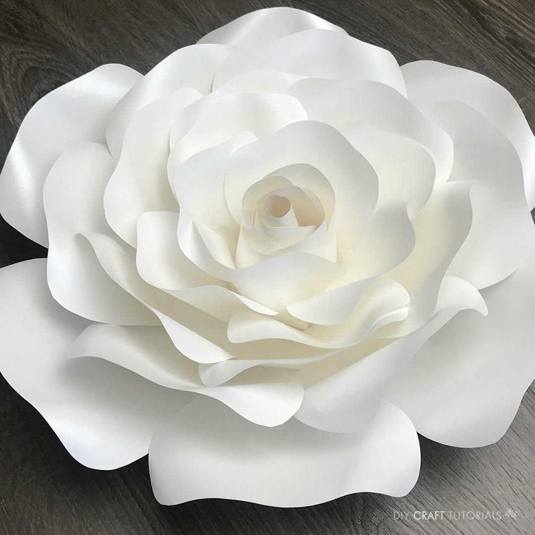Click through to learn how to make this gorgeous large paper rose. Cut by hand or use a Cricut or Silhouette