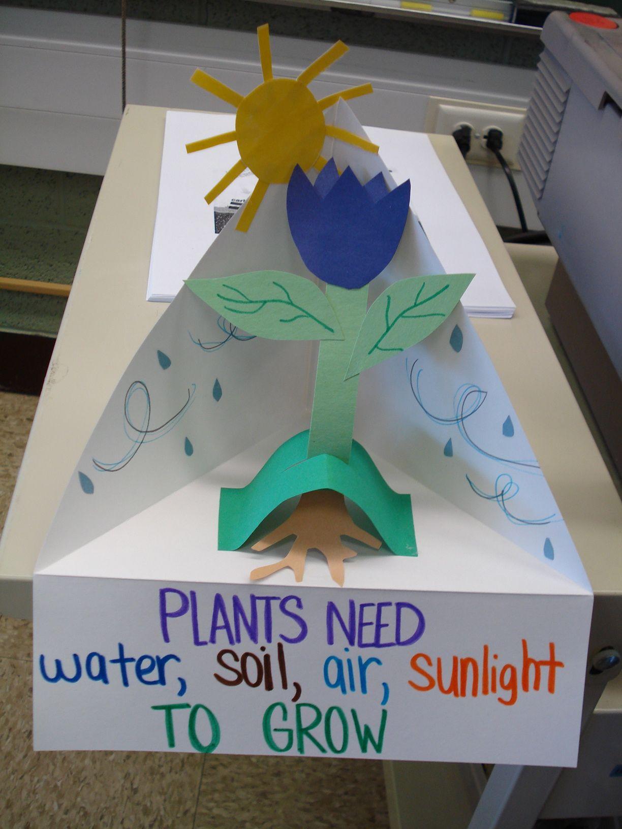 Plant Needs Diorama