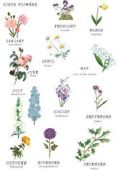 Birth Flower Family Print, Unframed