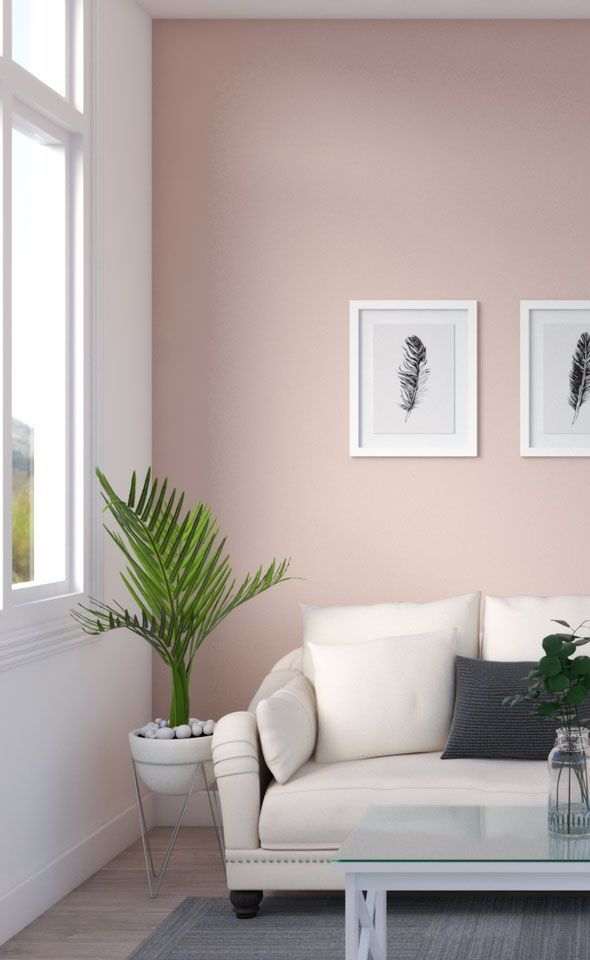 Minimalist Living Room with Pink Accent Wall