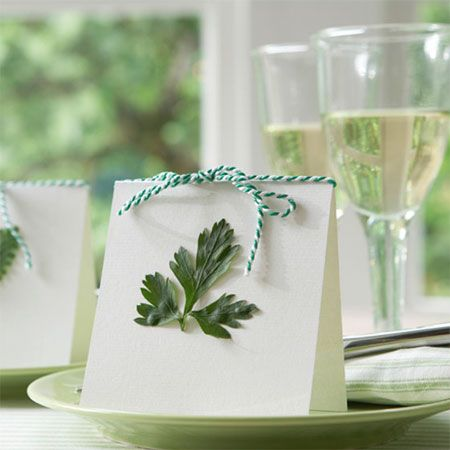 Summer luncheon table setting-Seating Cards & Summer luncheon table setting-Seating Cards | Party Ideas ...