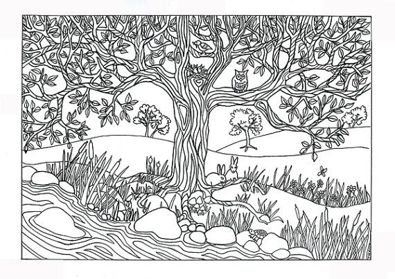 Tree River Nature Scene Coloring Page Coloring For Adults Coloring Pages Nature Tree Coloring Page Coloring Pages