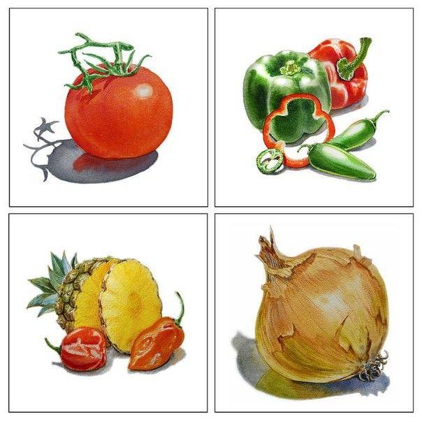 Одноклассники   Иллюстрации еды, Овощи, Картинки