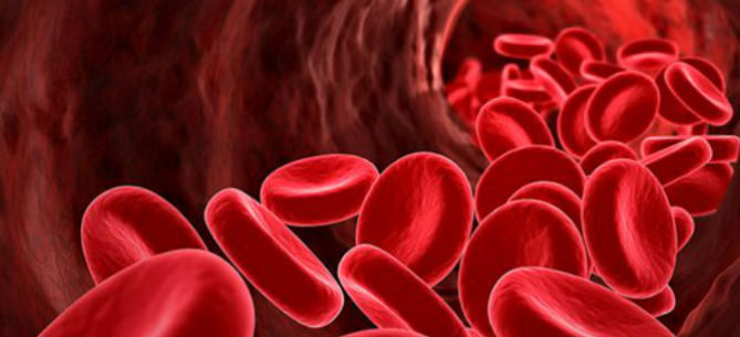 blood cells powerpoint template. use our collection of #blood, Modern powerpoint