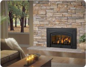 Napoleon Fireplace Napoleon Gas Fireplace Wood Burning