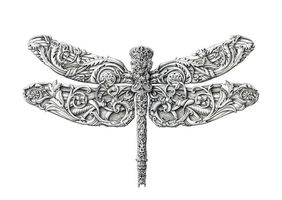 little-wings-insect-drawings-alex-konahin-9.jpg (915×649)
