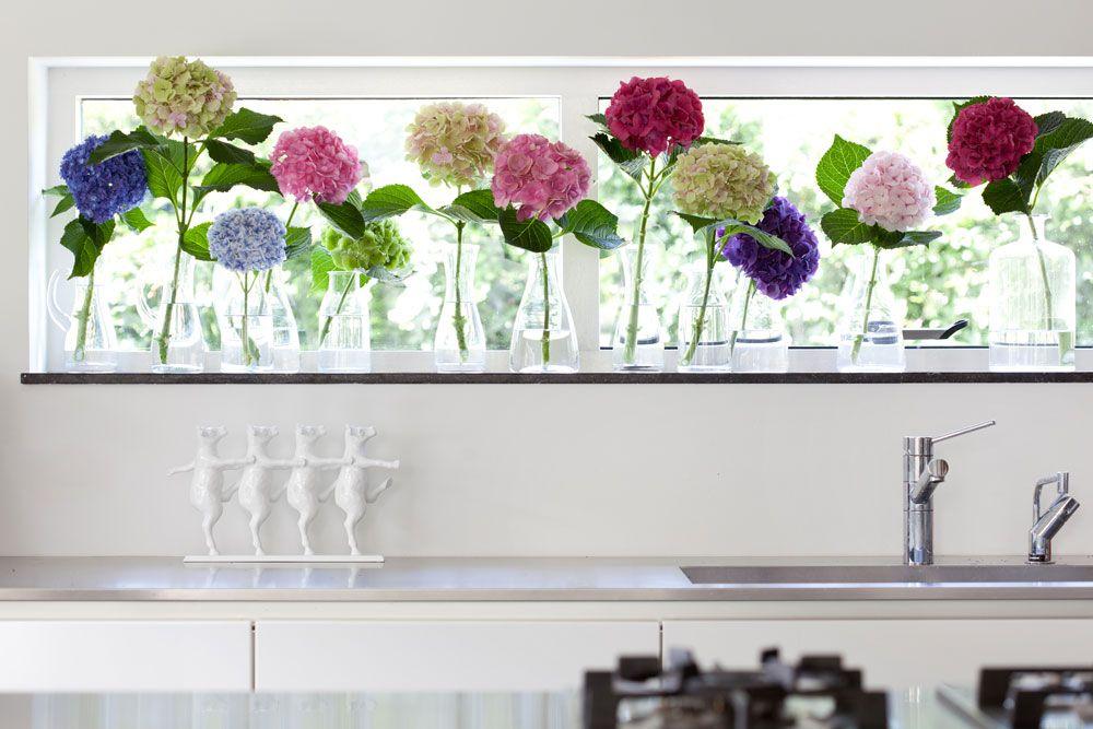 Schoner Wohnen Mit Hortensie Dekoration Interieur Interior Mit Bildern Dekorative Vasen Bodenvasen Wandvase