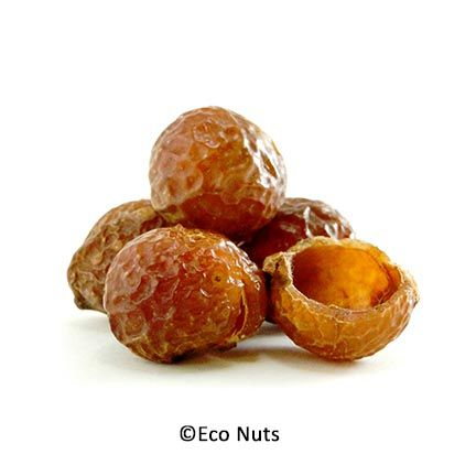 What Are Soap Nuts Soap Nuts Organic Cleaning Products