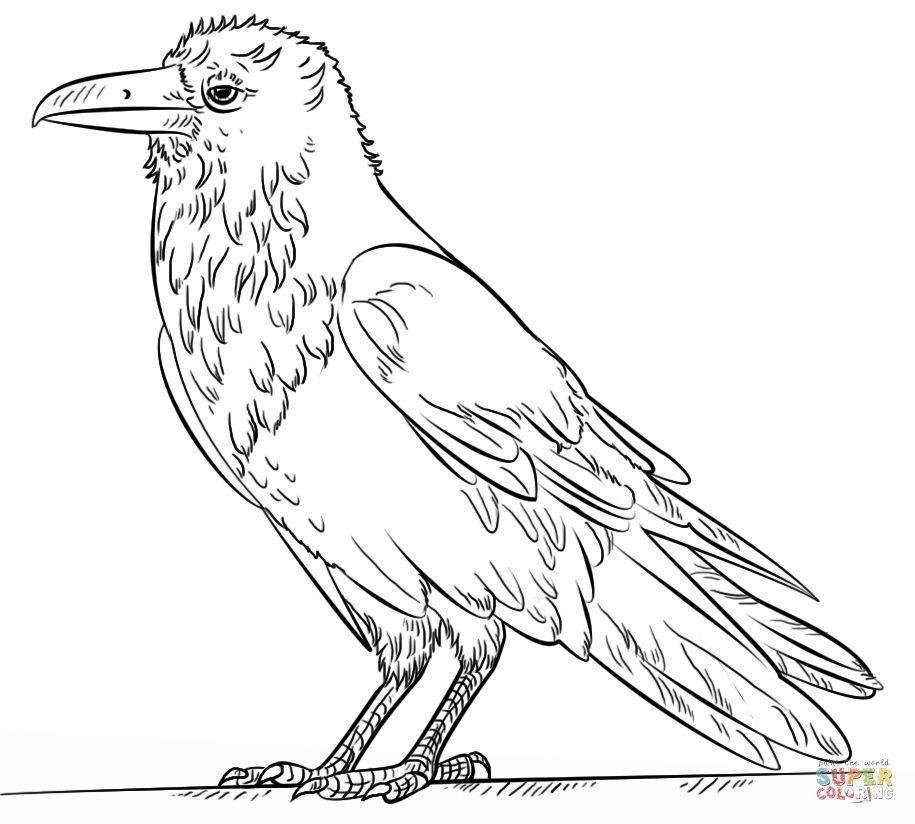 Raven Coloring Page Awesome Mon Raven Coloring Page Of Raven Coloring Page Unique Creepy Raven Coloring Pages Coloring Risunok Ptic Abstraktnye Raskraski Voron