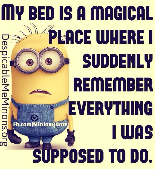 50 Funniest Minions Pictures Sayings Minions Funny Minions