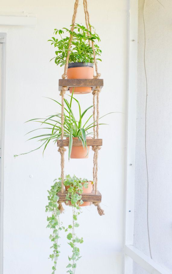 This Item Is Unavailable Hanging Plants Hanging Plants Diy Plant Decor