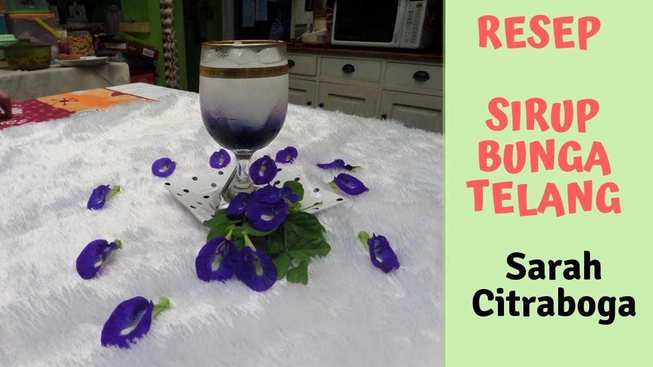 Resep Cara Membuat Sirup Bunga Telang Vlog Tropis Pewarna Makanan Bunga