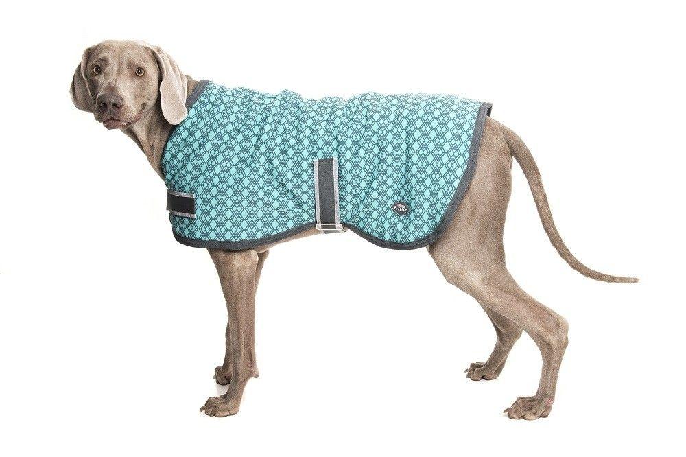 Petlife Ultralight Odour Resistant Dog Coat Teal Dog Coats Dogs Pets