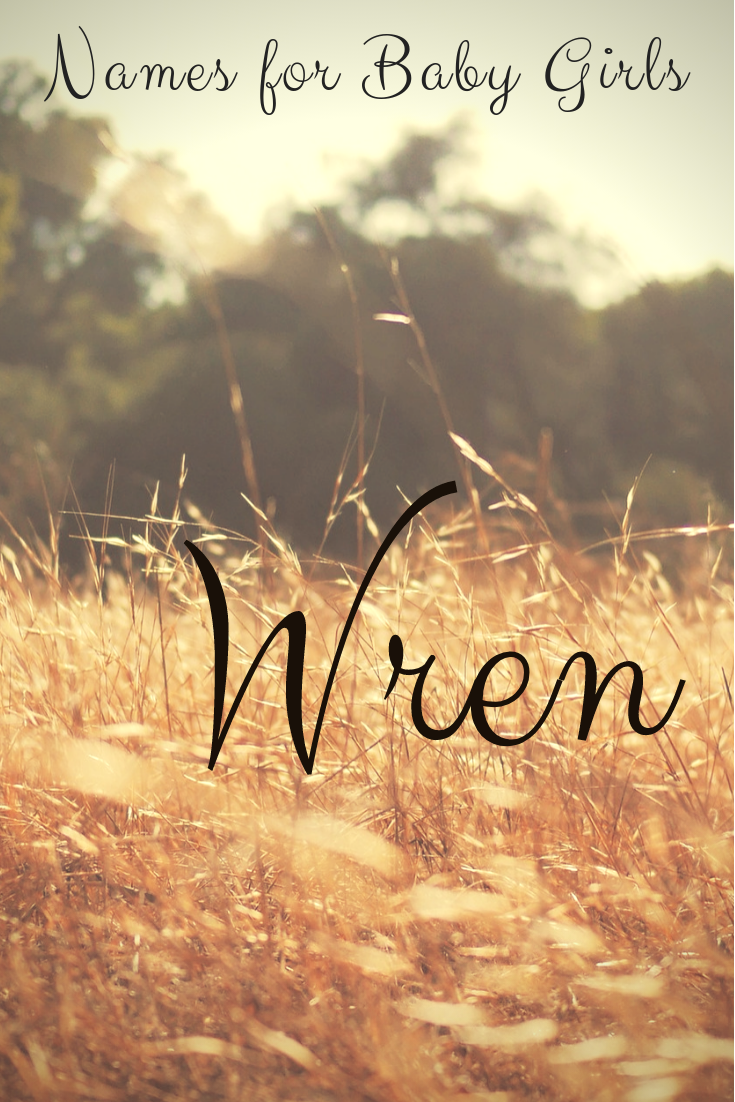 Baby Names. Enjoy this collection of names for girls. This playlist includes nature names, unique names and other baby girl names in many themes. Relax & Enjoy! #namingbaby #babynames #names #Wren #itsagirl #girlnames #babynames