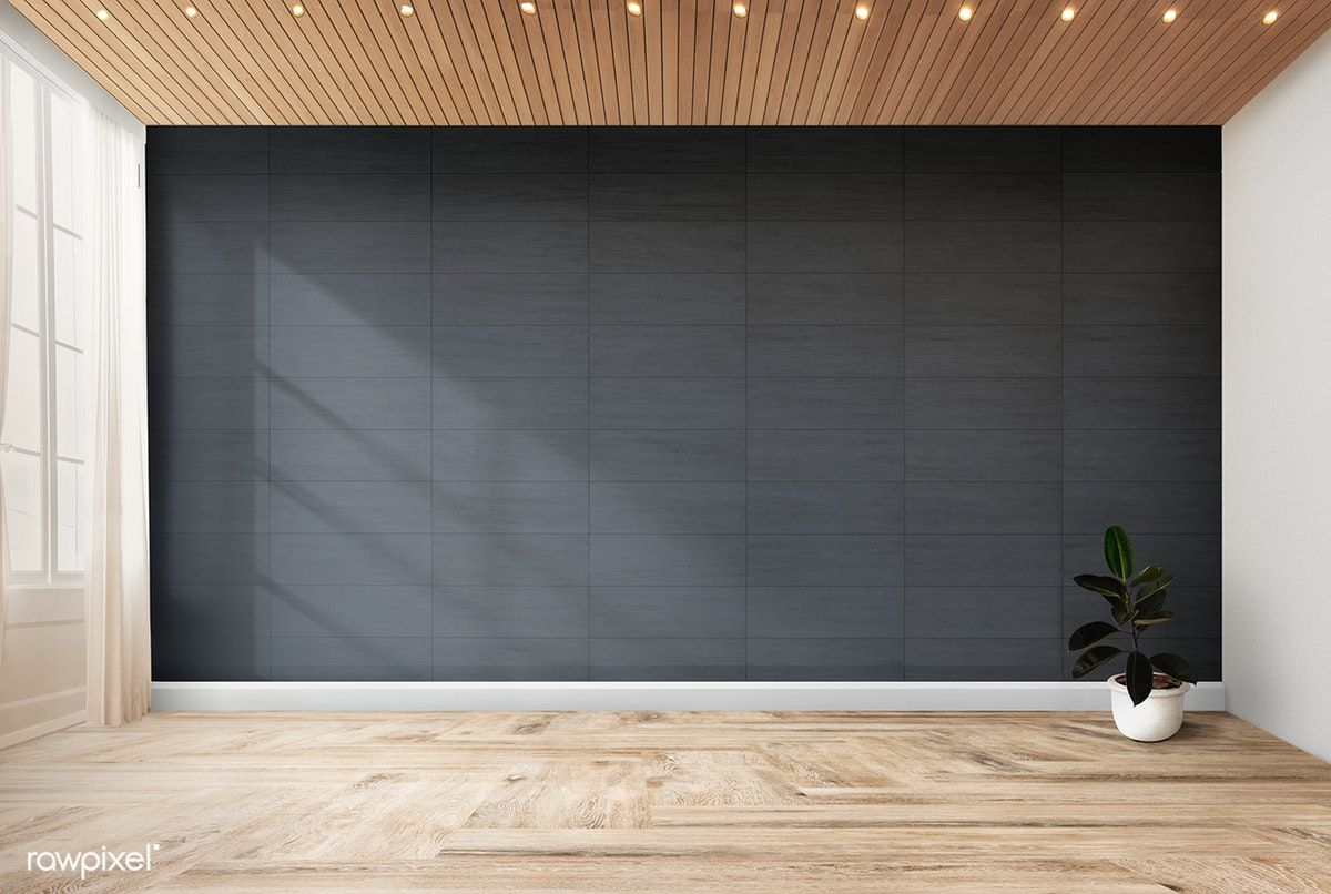 Plant Against A Black Wall Mockup Free Image By Rawpixel Com