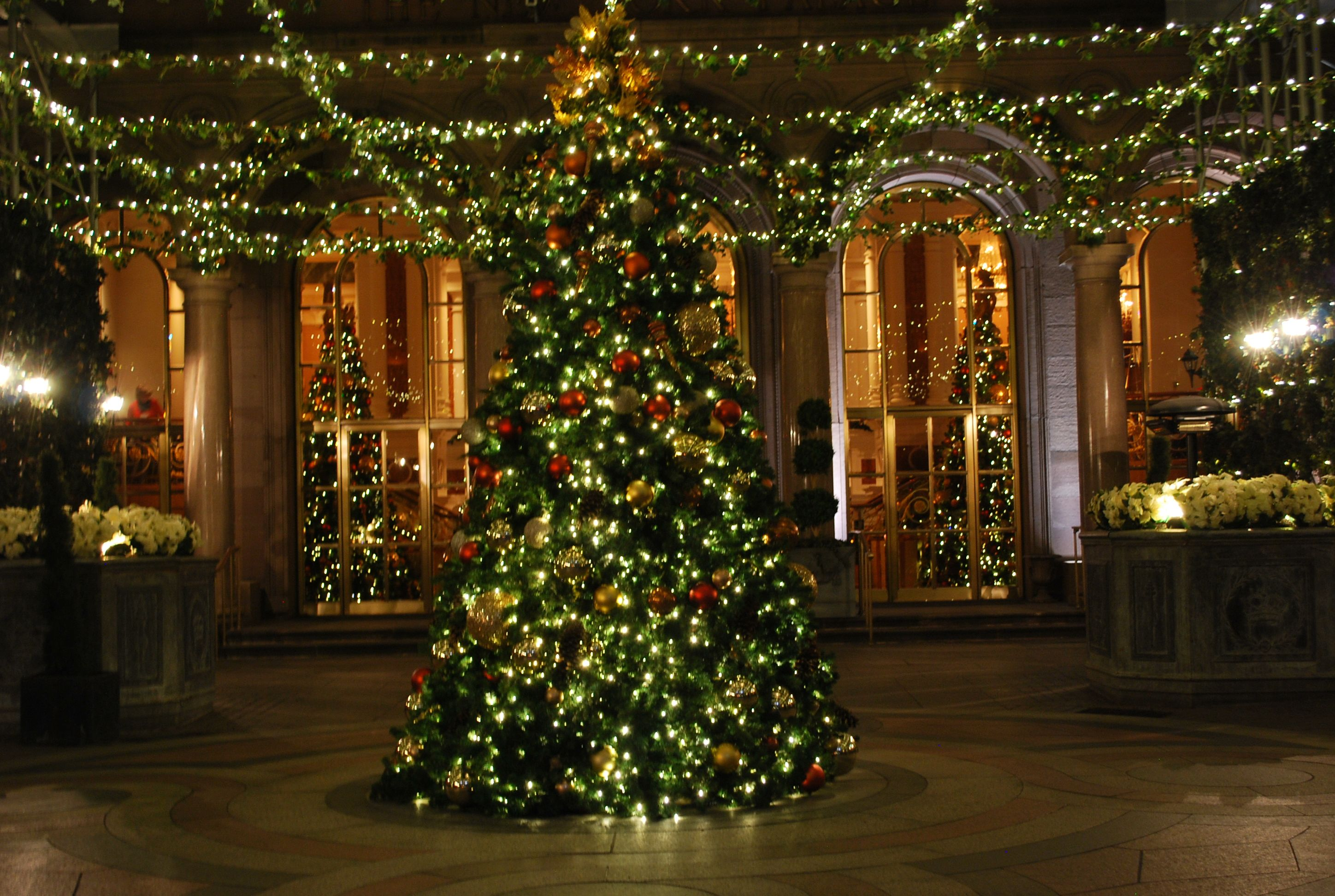 Christmas tree in NY | Photography | Pinterest | Christmas tree and ...