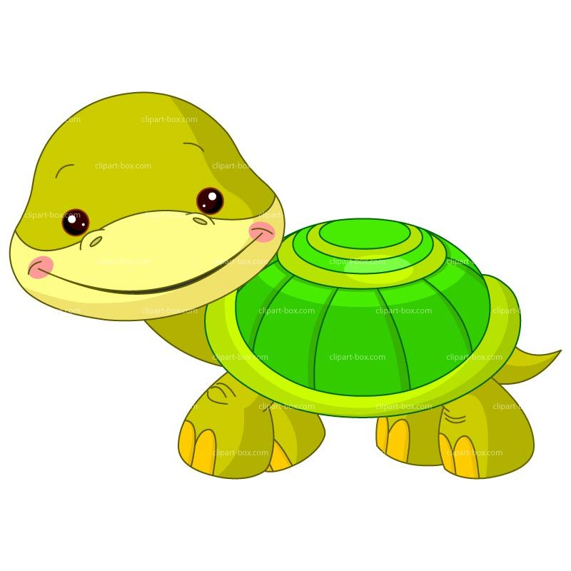 CLIPART BABY TURTLE | Royalty free vector design | PIC ...