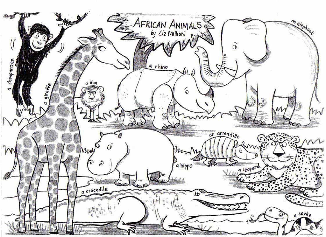 Image Result For African Animals Coloring
