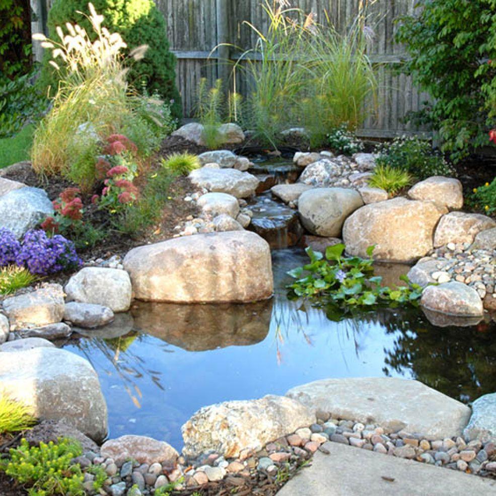 Small Water Gardens, Backyard Water