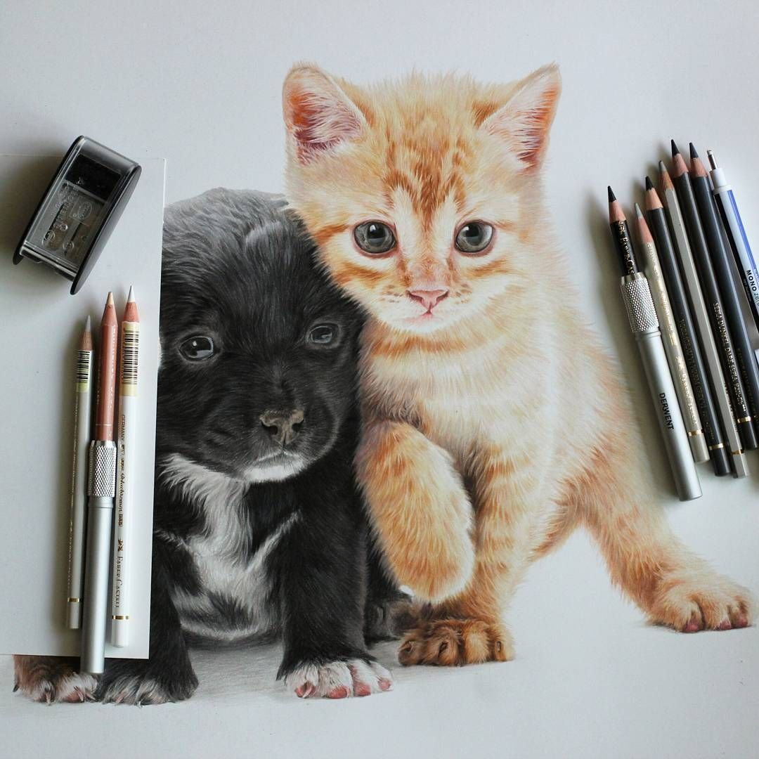 Cute Kittens And Puppies Drawings Cute Cat Illustration Puppy Drawing Drawings