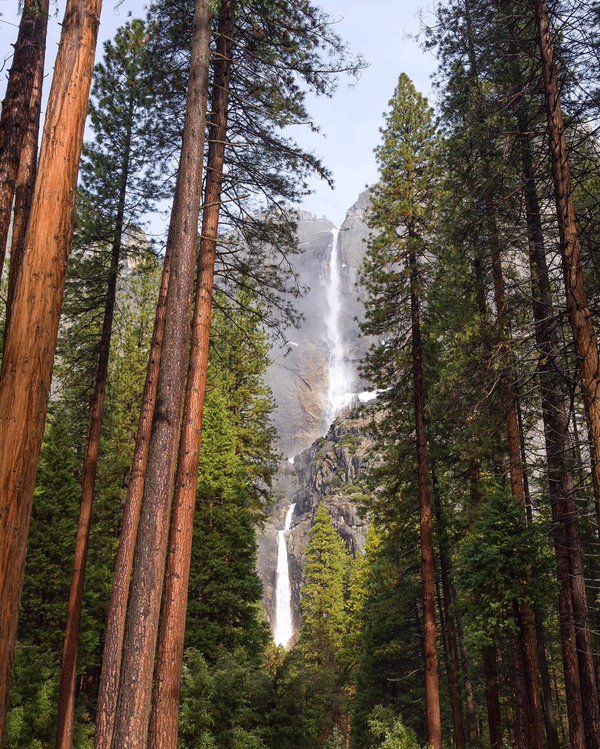 Tower Trees & Yosemite Falls went here with Mom & Dad! US Dept of Interior (@Interior)   Twitter