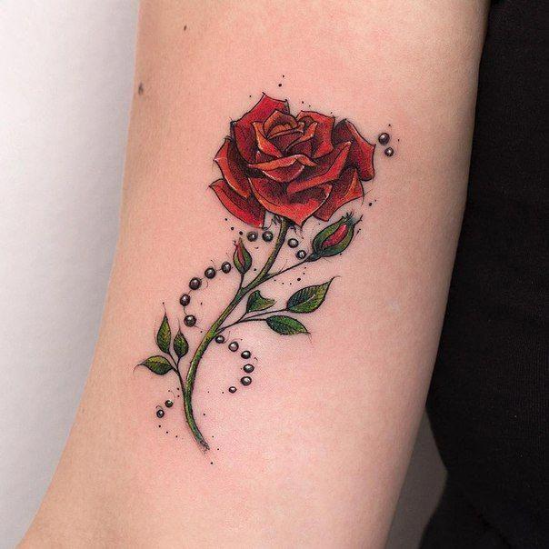 Foto Totalmente Tatuajes De Rosas Tatuajes De Rosas Rojas Tatuajes De Mariposas Con Nombres