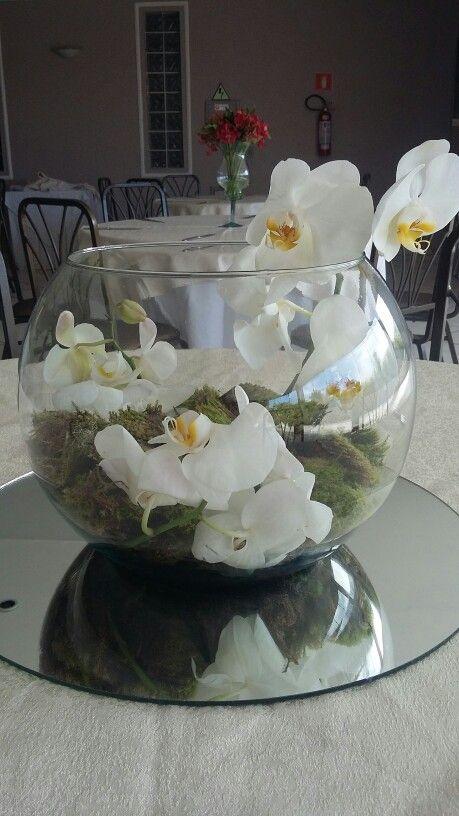 Aquário com orquídeas brancas