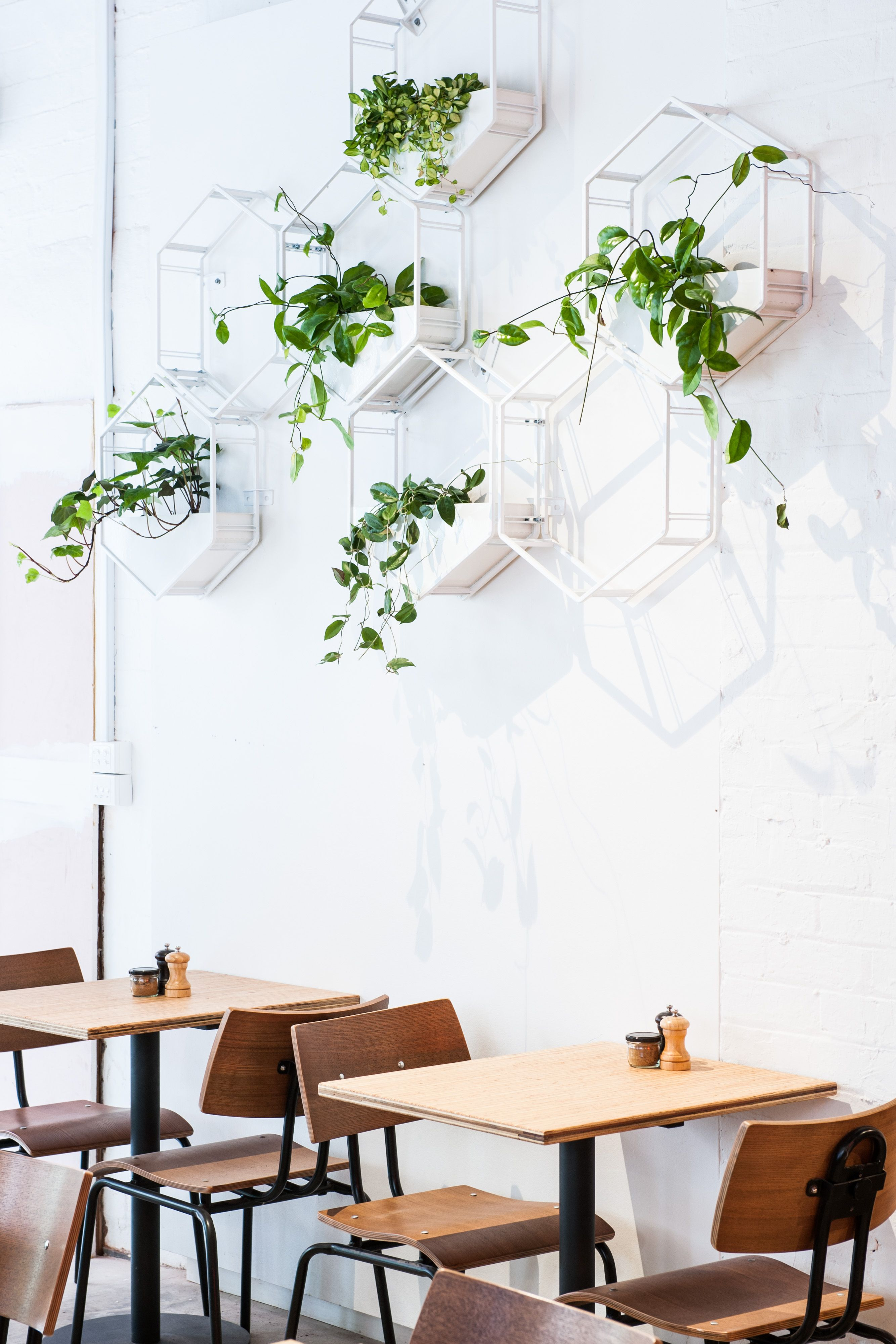 Wabe Modular Wall Planter By Oblica And Glasshaus Wall Planter Modular Walls Wall Design
