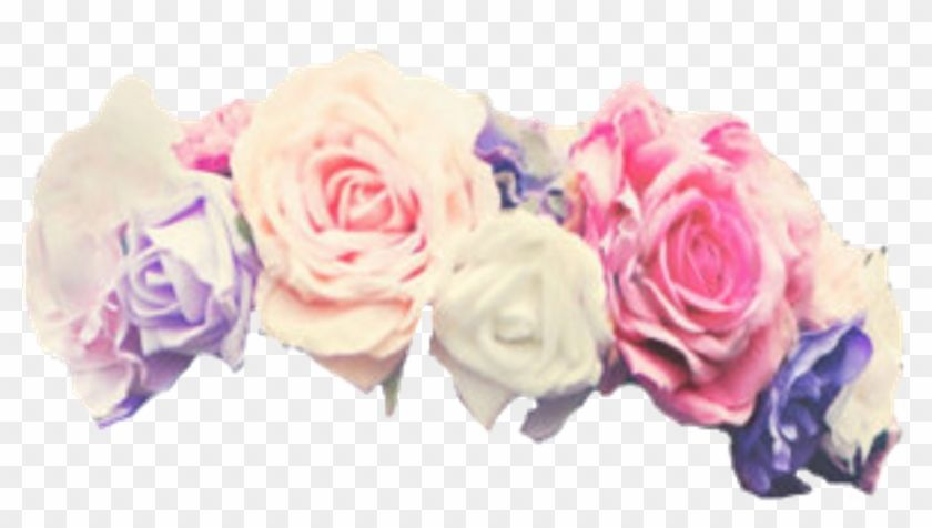 Find Hd Flowers Flower Floral Crowns Crown Flower Crown Transparent Overlay Hd Png Download To Search And Do Overlays Transparent Flower Crown Floral Crown