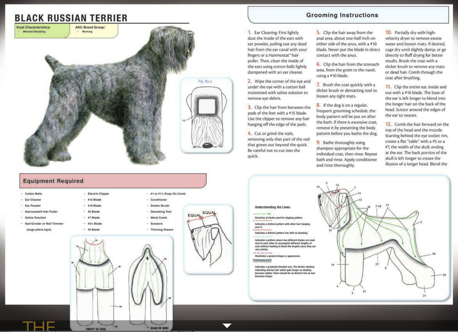 Black Russian Terrier Black Russian Terrier Black Russian Japanese Dog Grooming