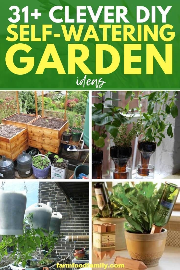 Best DIY Self-Watering Bottle & Container Garden Ideas, Beste DIY Self-Watering Bottle & ... #selfwatering