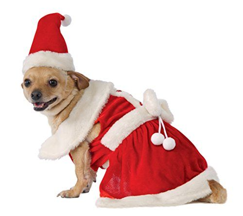 the best christmas dog costume outfit ideas funny cute outfits such as santa mrs claus elves reindeer gingerbread man snowman even large options - Large Dog Christmas Outfits