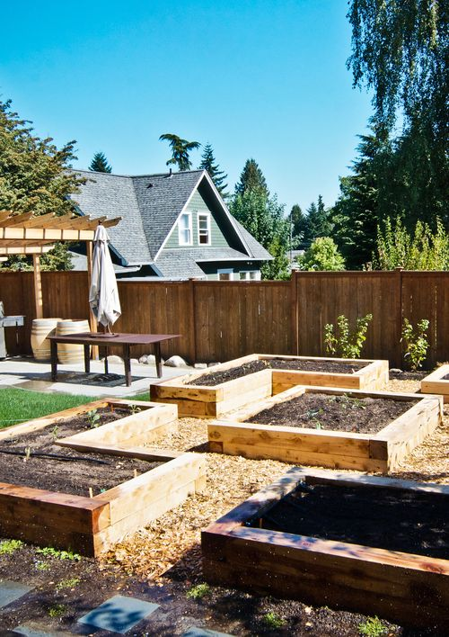 South Seattle Edible Landscape_Seattle Urban Farm Company ...