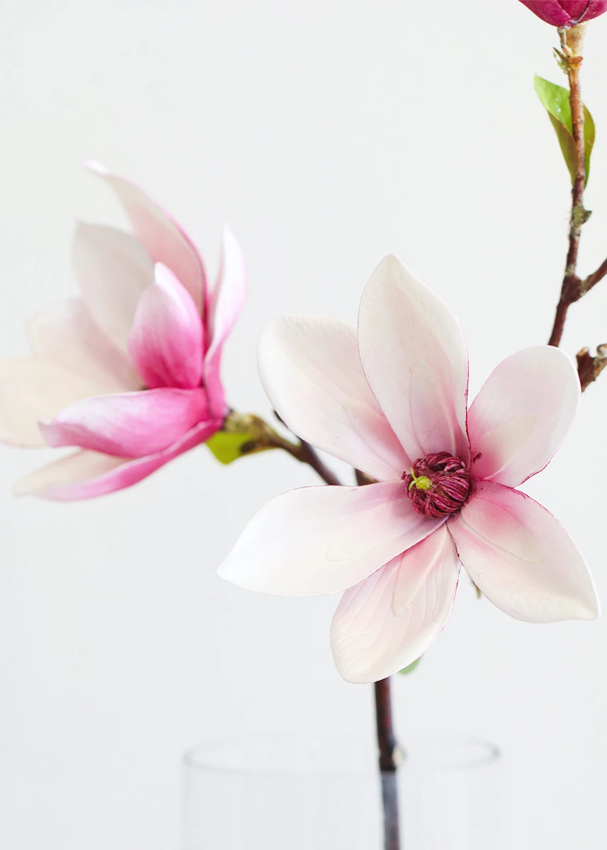 Pink Magnolia Branch Artificial Spring Flowers Afloral Com In 2020 Magnolia Flower Floral Branch Cherry Blossom Flowers