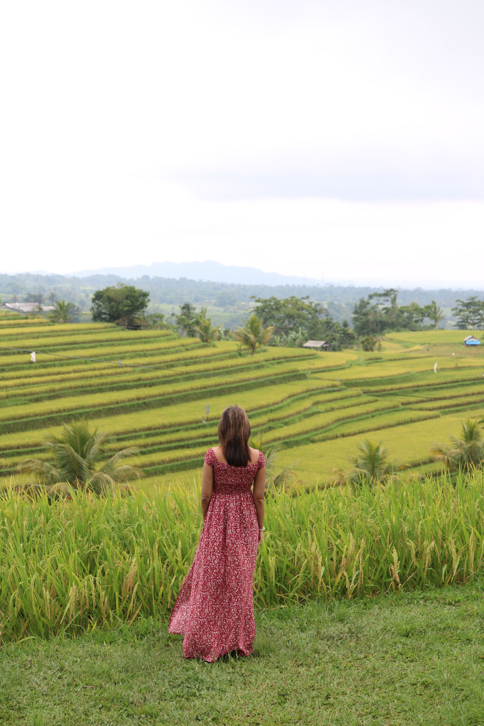 Things to do in Bali Indonesia - Binnys Food amp Travel, hotel review the laguna a luxury collection resort amp spa karibu to binnys food and travel diaries! i set up this blog to share my experiences eating out cooking as well as travelling both in the uk and globally. i love packing my bags and going off on adventures as one of the best things about travelling is the ability to just get lost in it., 54 dos and donts when visiting bali contented traveller these are 54 dos and donts when vi