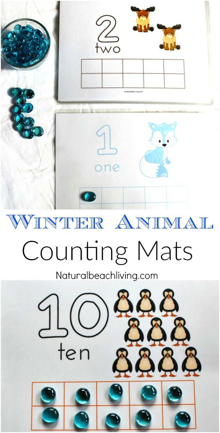 Adorable Winter Animal Counting Mats Preschool themes