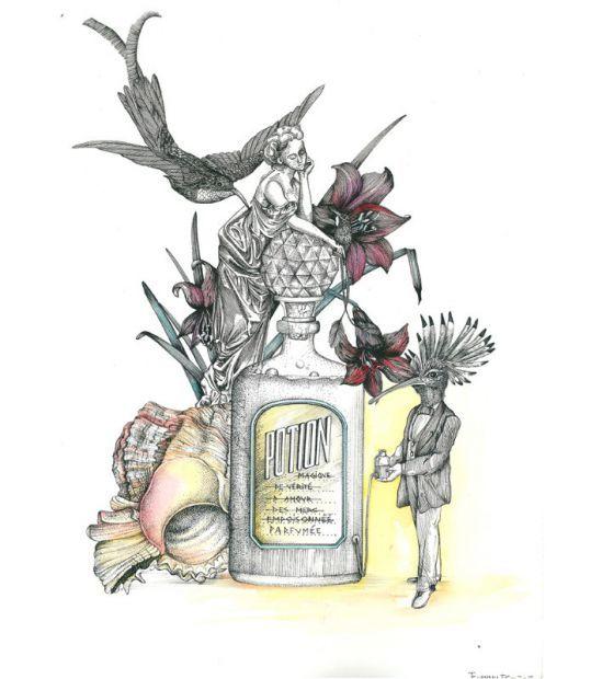 illustration fanny casau potion.jpg - Fanny CASAU | Virginie