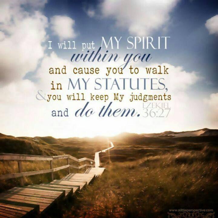 Deut. 16:16-17; Lev. 23:15; Exodus 19; Exodus 34:22; 2