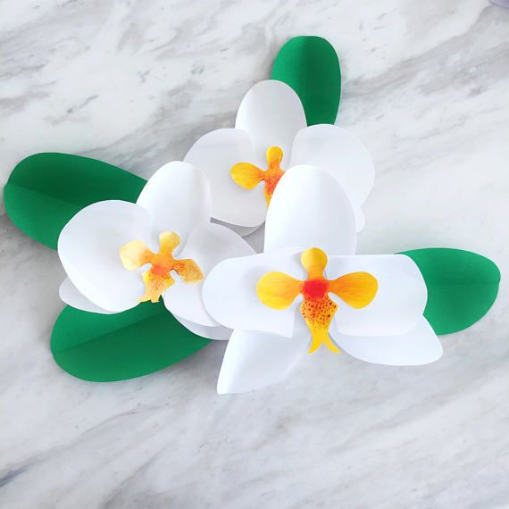 paper orchid template and step by step photo instructions make some