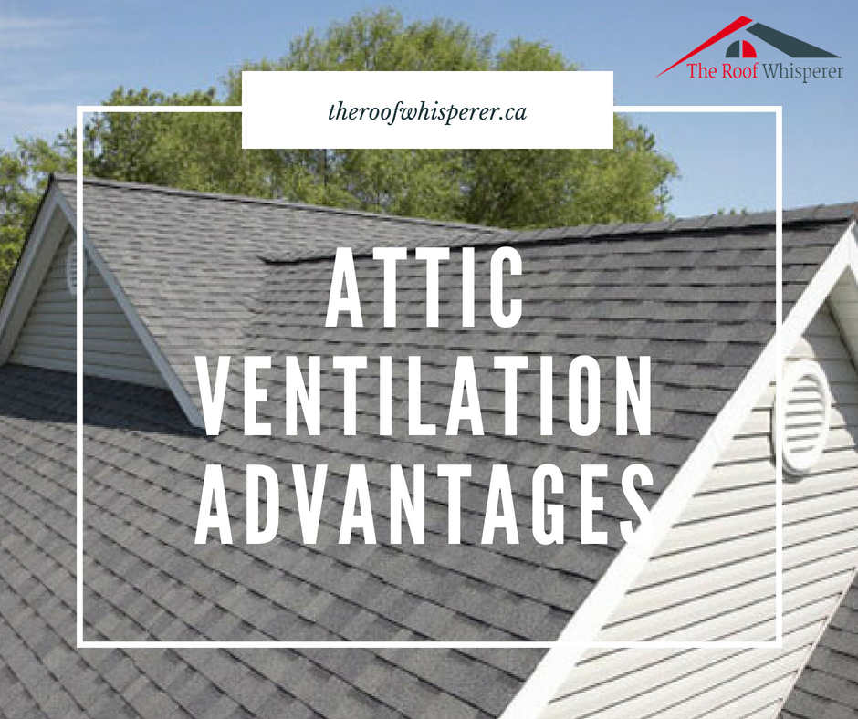 Roofventilation In Toronto Is Important Because The Roof Will Maintain The Temperature And Vent The Moisture To The Att Cool Roof Roofing Contractors Roofing Companies