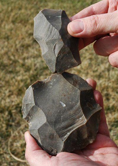 Levallois Prepared Core Flake Native American Artifacts