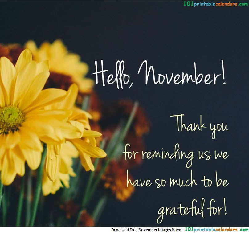 Hello November Quotes #hellonovemberwallpaper Hello November Quotes #hellonovember Hello November Quotes #hellonovemberwallpaper Hello November Quotes #hellonovemberwallpaper