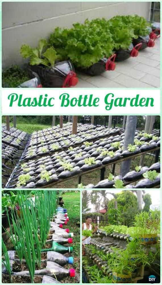 DIY Plastic Bottle Vegetable Garden